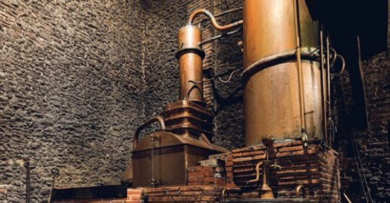 Illustration de l'article L'alchimie de l'Armagnac : Domaine d'Ognoas