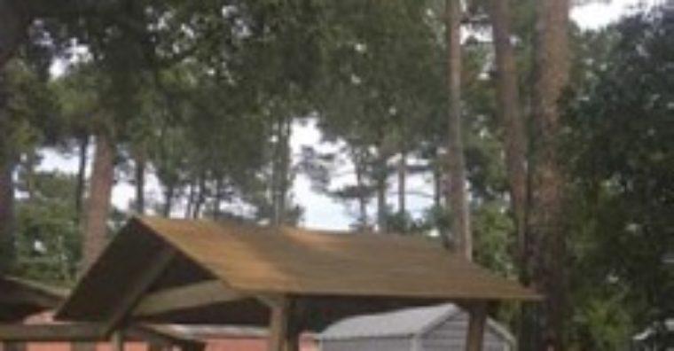 Illustration de l'article Les campings passent au vert