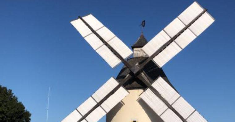 Illustration de l'article TRADITIONS – Le moulin de Bénesse-les-Dax inauguré