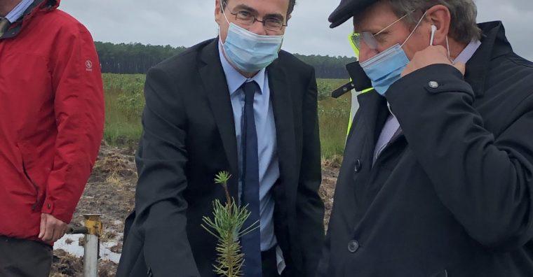 Illustration de l'article 1 000e hectare de forêt pour DRT AB