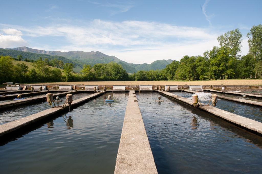 Aqualand : 41 piscicultures
