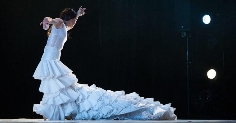 Illustration de l'article Nouveau scénario pour Arte Flamenco