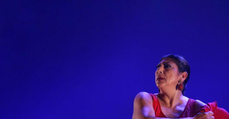 Illustration de l'article [ Mont-de-Marsan ] Festival «Arte Flamenco» réinventé